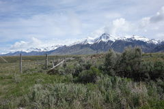 Mt McCaleb près de Mackay, Idaho Images stock
