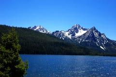 Mt McGowan och Stanley Lake - Idaho Royaltyfri Foto