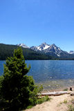 Mt McGowan och Stanley Lake - Idaho Royaltyfri Fotografi