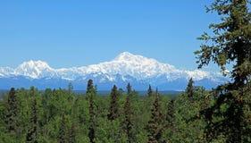 Mt McKinley Immagini Stock Libere da Diritti