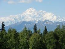 Mt. McKinley, Alaska op een duidelijke dag Royalty-vrije Stock Afbeelding