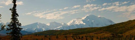 Mt McKinley en panorama del parque nacional de Denali Foto de archivo libre de regalías
