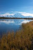 Mt. McKinley from Reflection Pond Royalty Free Stock Photo