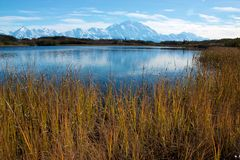 Mt. McKinley from Reflection Pond Royalty Free Stock Images