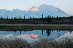 Mt. McKinley during sunrise from lake. Mt. McKinley in NP Denali during sunrise, from a lake near Wonder Lake campsite Stock Photo