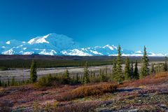 Mt. McKinley from tundra Stock Photography