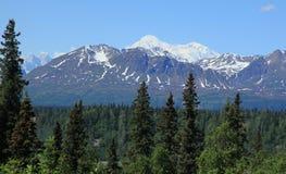 Mt McKinley Royalty Free Stock Image