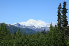 Mt McKinley Royalty Free Stock Photography