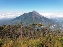 Mt Merapi royaltyfria bilder