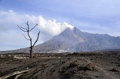 Mt. Merapi - Java - Indonesien stockbild