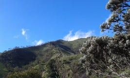 Mt Merbabu 免版税库存图片