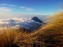 Mt Merbabu Arkivbild