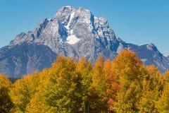 Mt Moran i nedgång Royaltyfria Foton