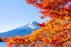 Mt Mount Fuji в осени стоковое изображение rf