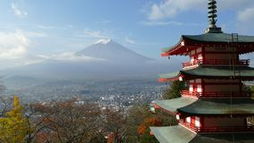 Mt Mount Fuji с цветами падения в Японии видеоматериал