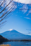 Mt Mount Fuji i höst Arkivfoto
