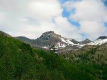 Mt Mt.圣Helens 图库摄影