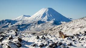 Mt Ngaruahoe Image libre de droits
