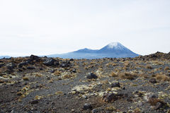 Mt Ngauruhoe национального парка Tongariro Стоковое фото RF