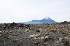 Mt Ngauruhoe del parco nazionale di Tongariro Fotografia Stock Libera da Diritti
