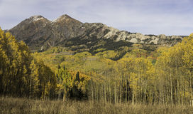 Mt. Owen and Ruby Peak with Changing Aspen Stock Photography