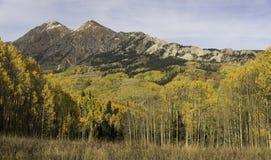 Mt Owen und Ruby Peak mit dem Ändern von Aspen Stockfotografie