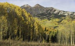 Mt Owen und Ruby Peak mit dem Ändern von Aspen Lizenzfreie Stockfotos