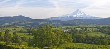 Mt. Panorama del valle de la capilla y de Hood River. imágenes de archivo libres de regalías