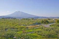 Mt Parc d'Iwaki et d'Apple Images libres de droits