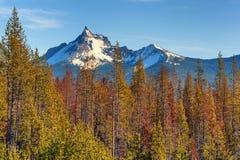 Mt Peça de Thielsen da escala da cascata imagens de stock royalty free