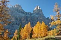 Mt Pelmo в осени Стоковое Фото