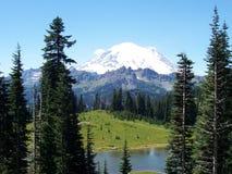 Mt. Più piovoso Fotografia Stock Libera da Diritti