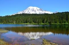 Mt Più piovoso dal lago reflection fotografie stock libere da diritti