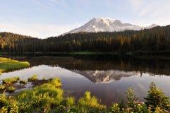 Mt. Più piovoso e lago reflection fotografia stock libera da diritti