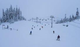 Mt Piekarniany narciarski teren fotografia royalty free