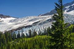 Mt Piekarz i Coleman lodowiec Zdjęcia Stock