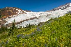 Mt Piekarz i Coleman lodowiec Zdjęcie Stock