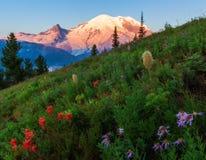 Mt Plus pluvieux, Washington State Images stock