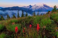 Mt Plus pluvieux, Washington State Photo libre de droits