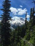Mt Plus pluvieux, Washington State Image stock