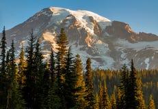 Mt Plus pluvieux, Washington State Photographie stock