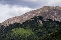 Mt princeton colorado rocky mountains. Mount princeton seen from st elmo colorado in the rocky mountains - forest pine tree evergreens and rocky summit peak Royalty Free Stock Images