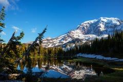 Mt.Raineer Stock Photo