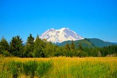 Mt. Rainer Imagenes de archivo