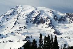 Mt. Rainer royalty-vrije stock afbeelding