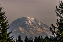 Mt. Rainer Stock Photos