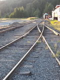 Mt Rainer Train tracks royalty free stock photo
