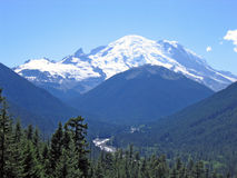 Mt Rainier. Mt. Rainier National forest taken from the lookout point royalty free stock images