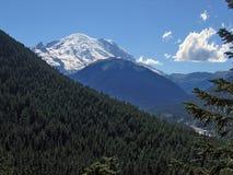 Mt Rainier. Mt. Rainier National forest stock photography