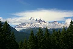 Mt Rainier Stock Photography